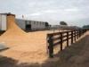 catlle-yard-sawdust
